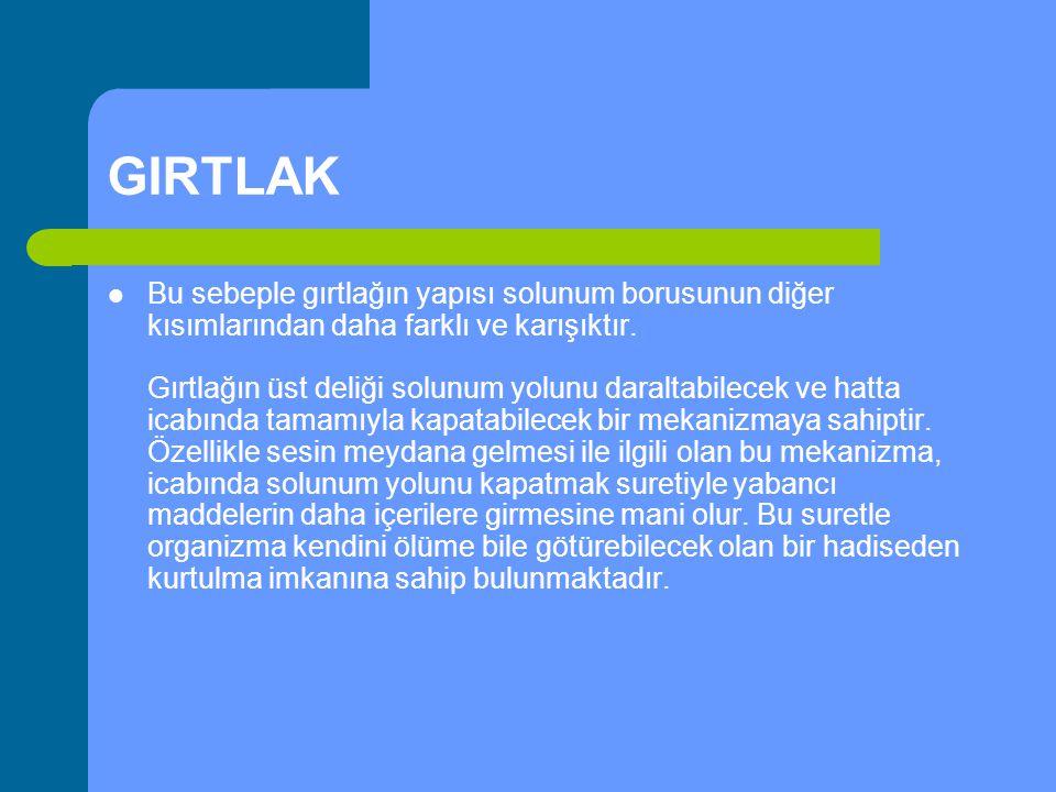 GIRTLAK