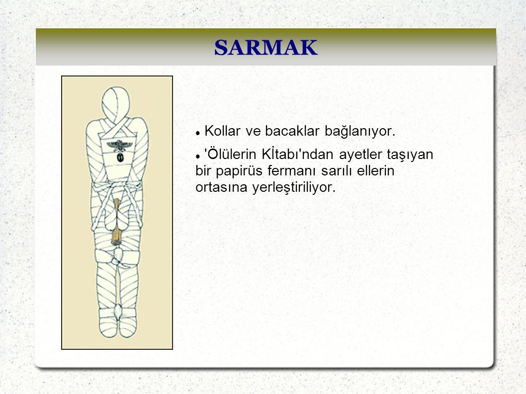 SARMAK Kollar ve bacaklar bağlanıyor.