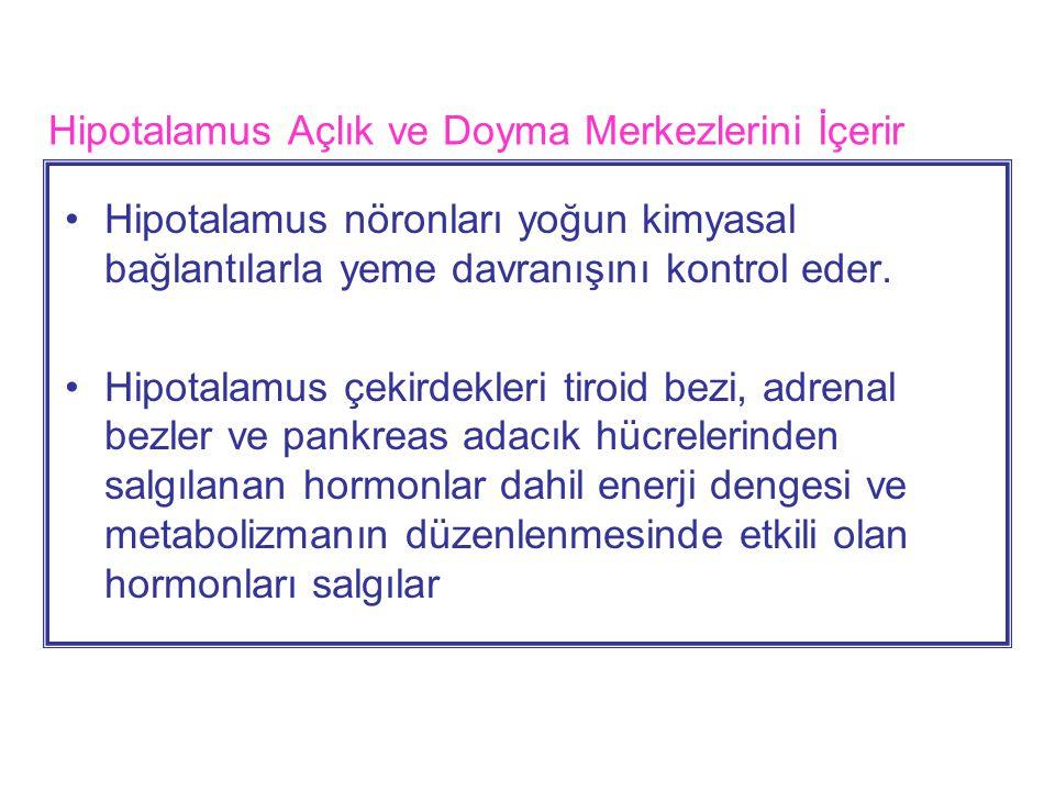 Hipotalamus Açlık ve Doyma Merkezlerini İçerir