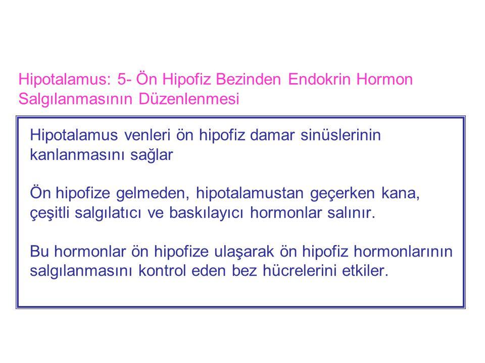 Hipotalamus: 5- Ön Hipofiz Bezinden Endokrin Hormon Salgılanmasının Düzenlenmesi