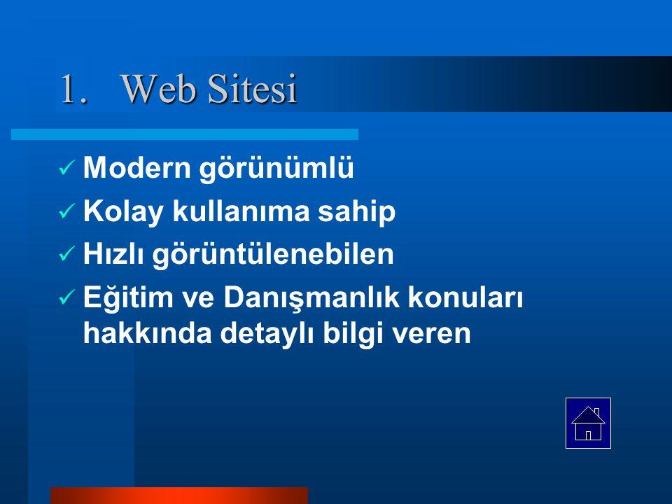 Web Sitesi Modern görünümlü Kolay kullanıma sahip