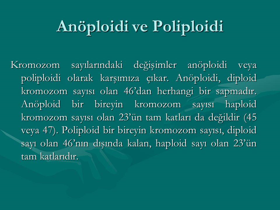 Anöploidi ve Poliploidi
