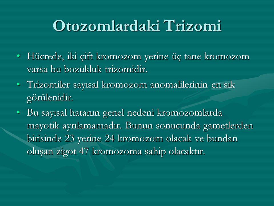 Otozomlardaki Trizomi
