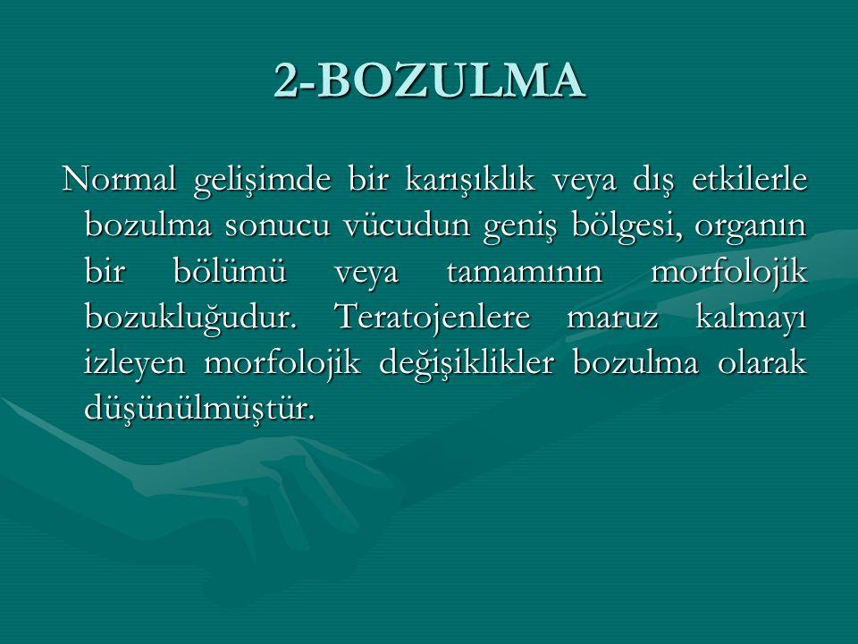 2-BOZULMA