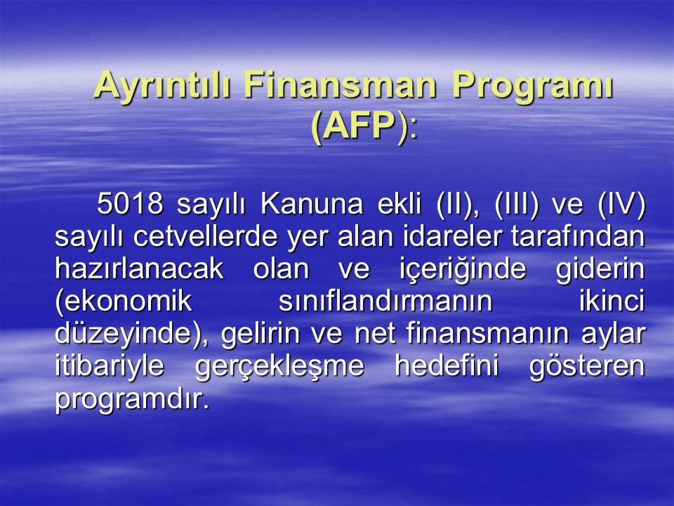 Ayrıntılı Finansman Programı (AFP):