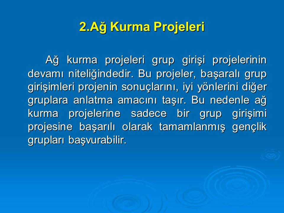 2.Ağ Kurma Projeleri