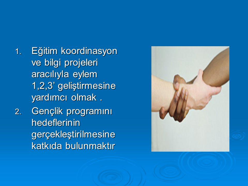 Eğitim koordinasyon ve bilgi projeleri aracılıyla eylem 1,2,3' geliştirmesine yardımcı olmak .