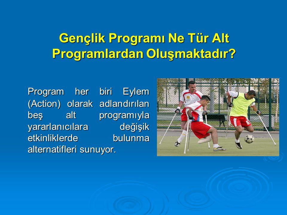 Gençlik Programı Ne Tür Alt Programlardan Oluşmaktadır