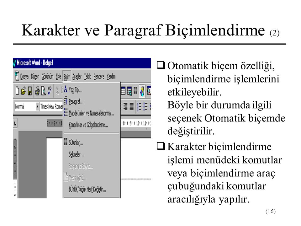 Karakter ve Paragraf Biçimlendirme (2)