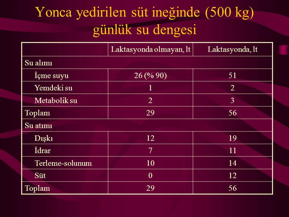 Yonca yedirilen süt ineğinde (500 kg) günlük su dengesi