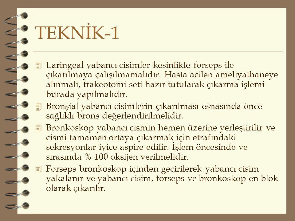 TEKNİK-1