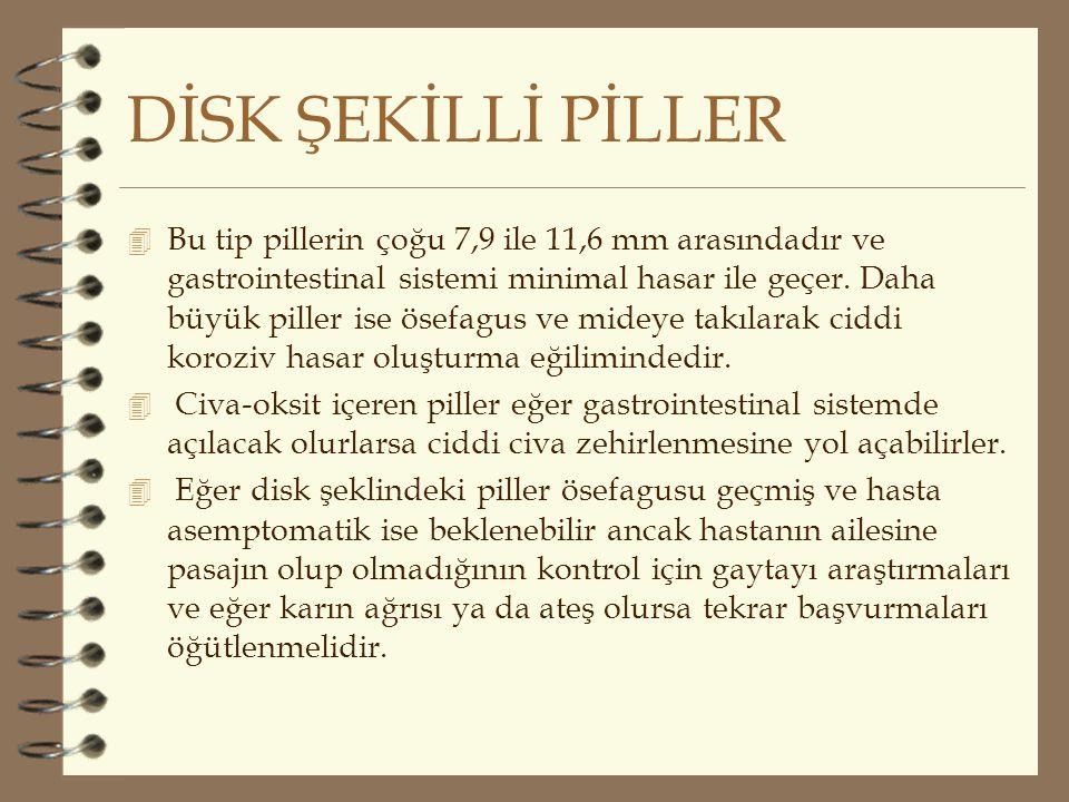 DİSK ŞEKİLLİ PİLLER