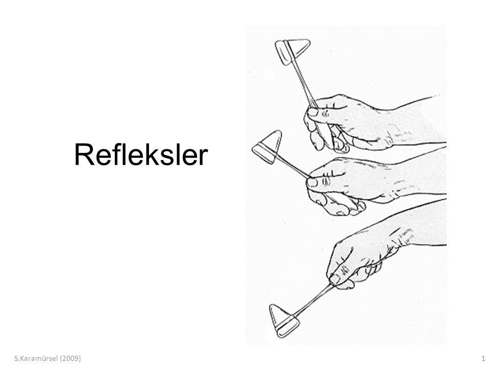 Refleksler S.Karamürsel (2009)