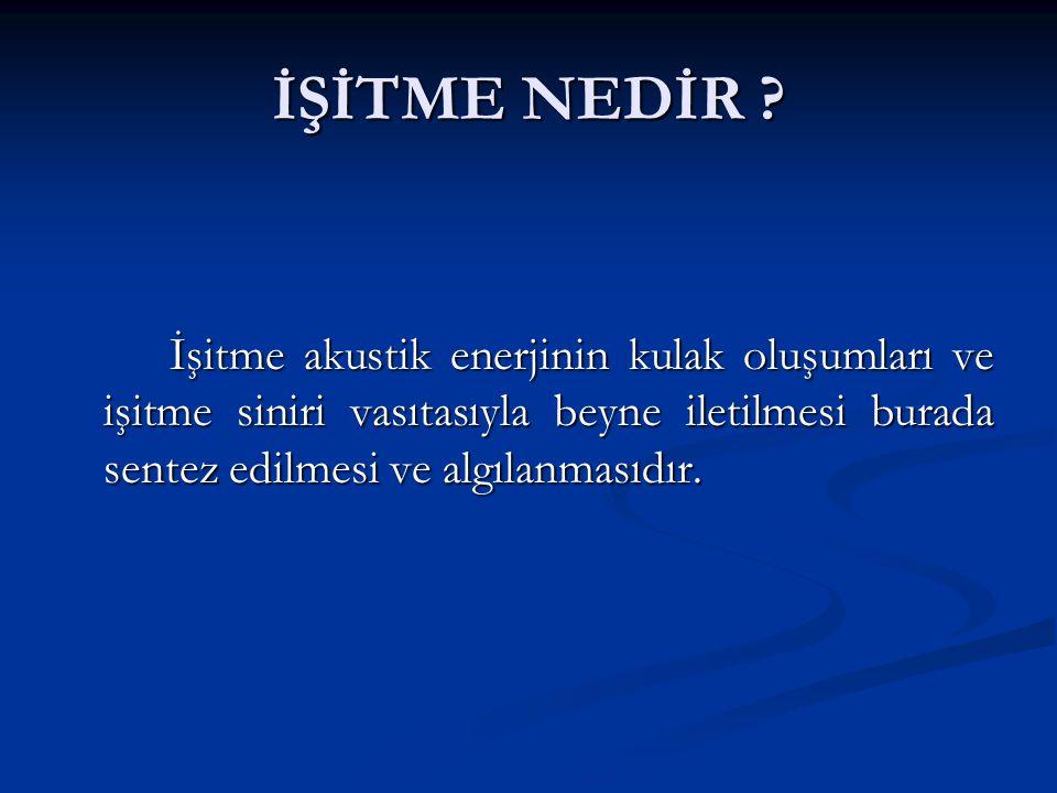 İŞİTME NEDİR .