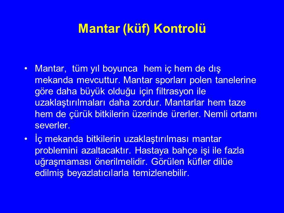 Mantar (küf) Kontrolü