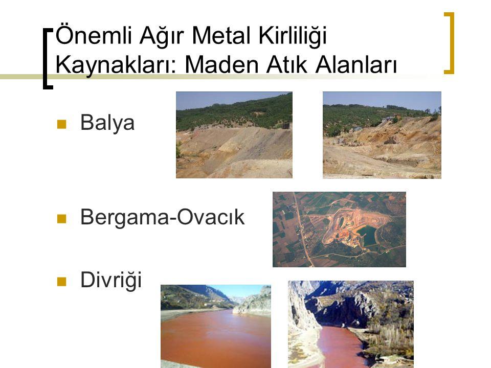 Önemli Ağır Metal Kirliliği Kaynakları: Maden Atık Alanları