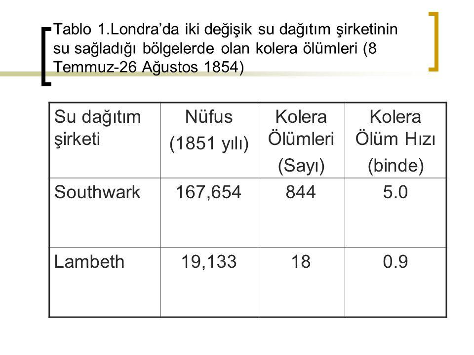 Su dağıtım şirketi Nüfus (1851 yılı) Kolera Ölümleri (Sayı)