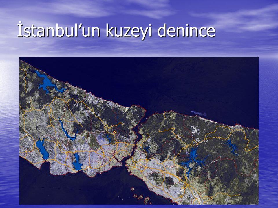 İstanbul'un kuzeyi denince