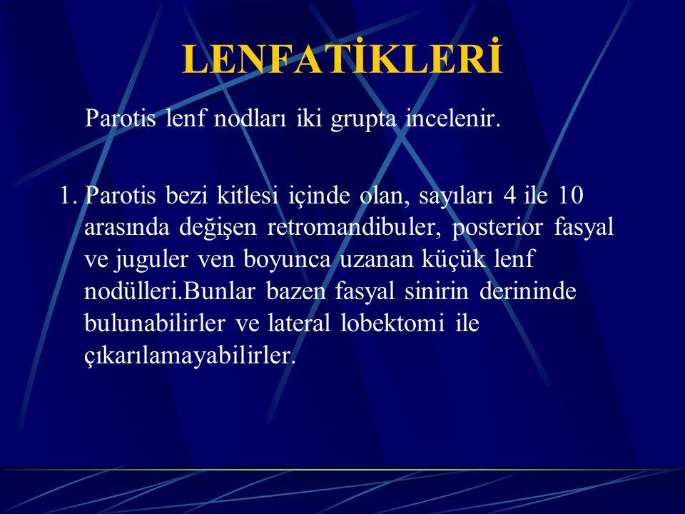 LENFATİKLERİ Parotis lenf nodları iki grupta incelenir.