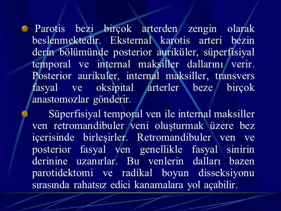 Parotis bezi birçok arterden zengin olarak beslenmektedir