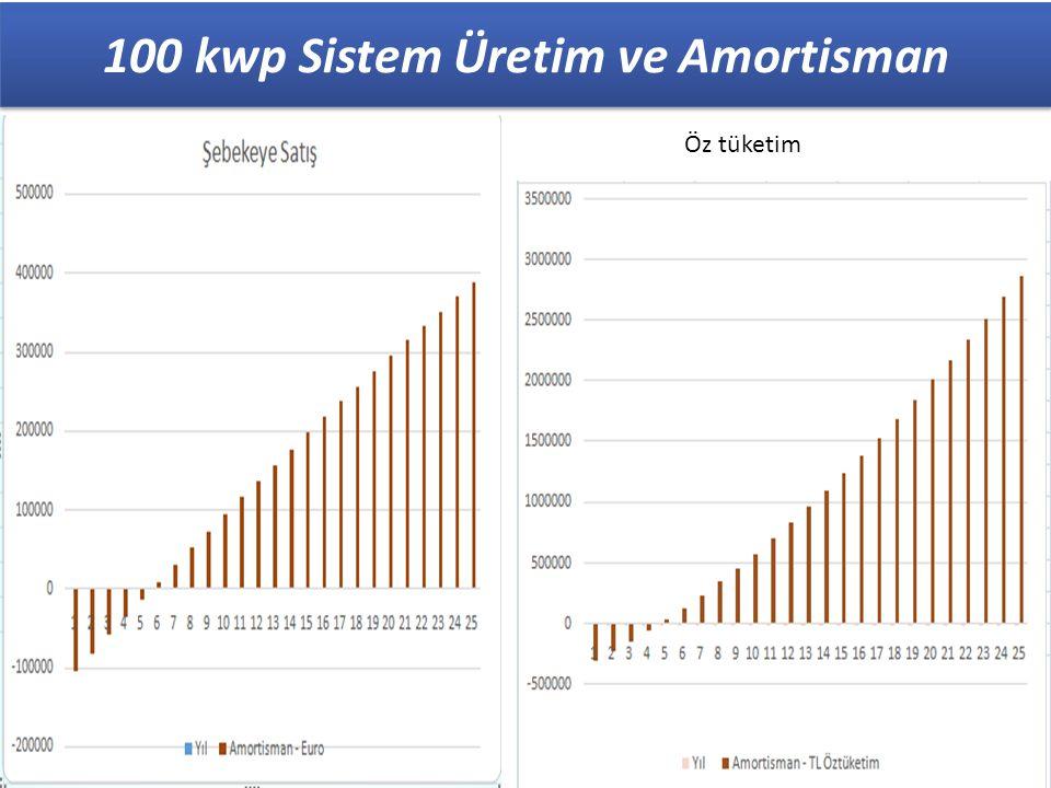 100 kwp Sistem Üretim ve Amortisman