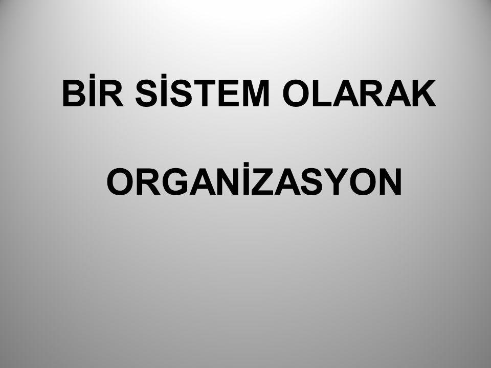 BİR SİSTEM OLARAK ORGANİZASYON