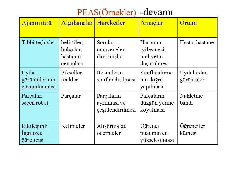 _PEAS(Örnekler) -devamı