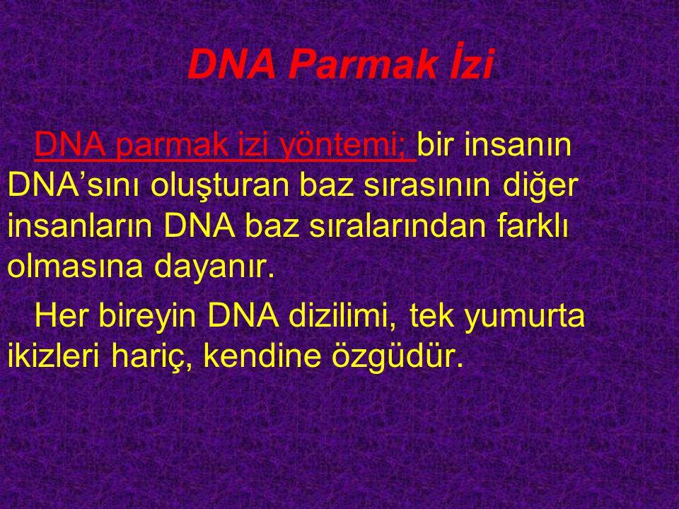 DNA Parmak İzi DNA parmak izi yöntemi; bir insanın DNA'sını oluşturan baz sırasının diğer insanların DNA baz sıralarından farklı olmasına dayanır.