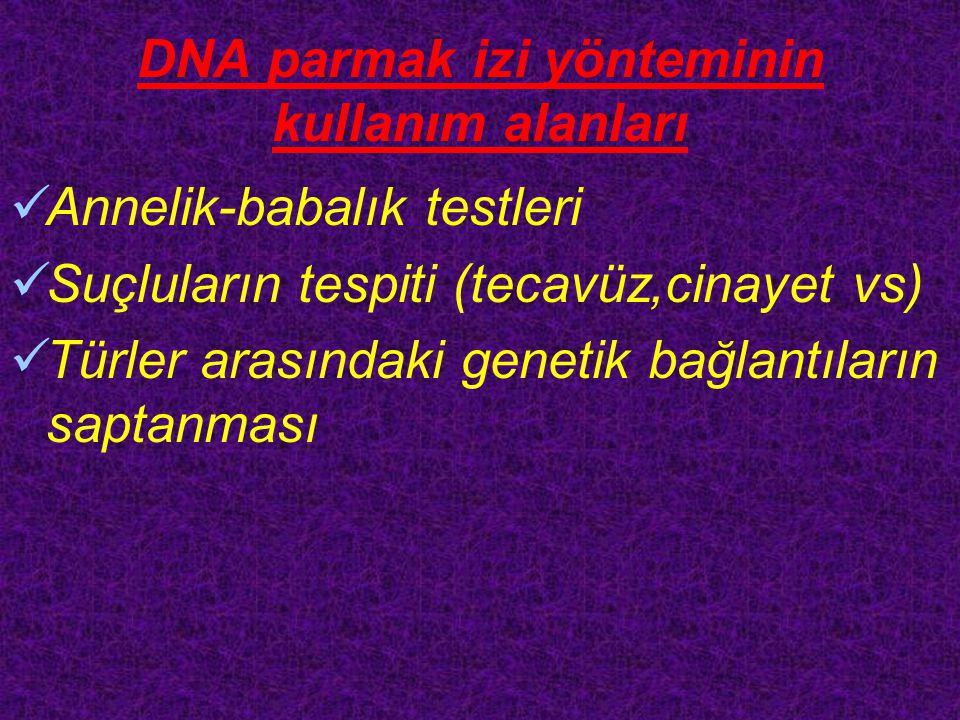 DNA parmak izi yönteminin kullanım alanları