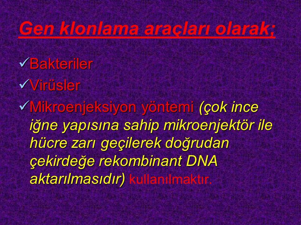 Gen klonlama araçları olarak;