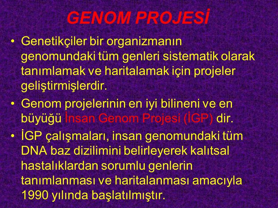 GENOM PROJESİ Genetikçiler bir organizmanın genomundaki tüm genleri sistematik olarak tanımlamak ve haritalamak için projeler geliştirmişlerdir.