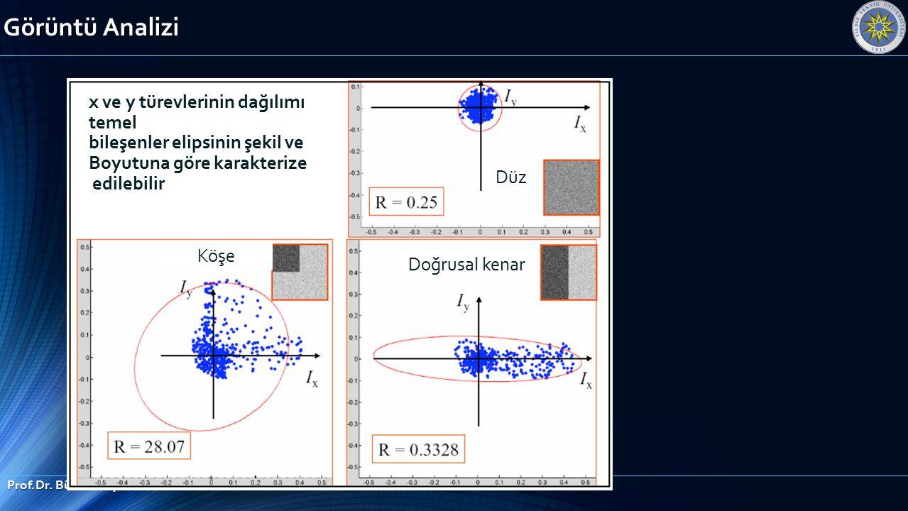Görüntü Analizi x ve y türevlerinin dağılımı temel