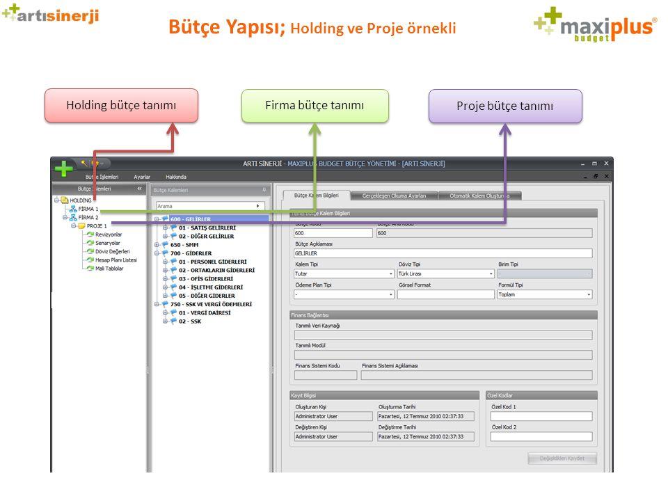 Bütçe Yapısı; Holding ve Proje örnekli