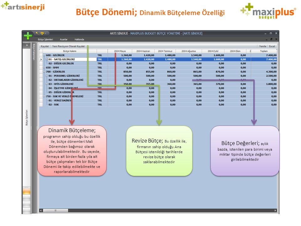 Bütçe Dönemi; Dinamik Bütçeleme Özelliği