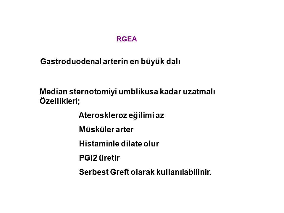Gastroduodenal arterin en büyük dalı