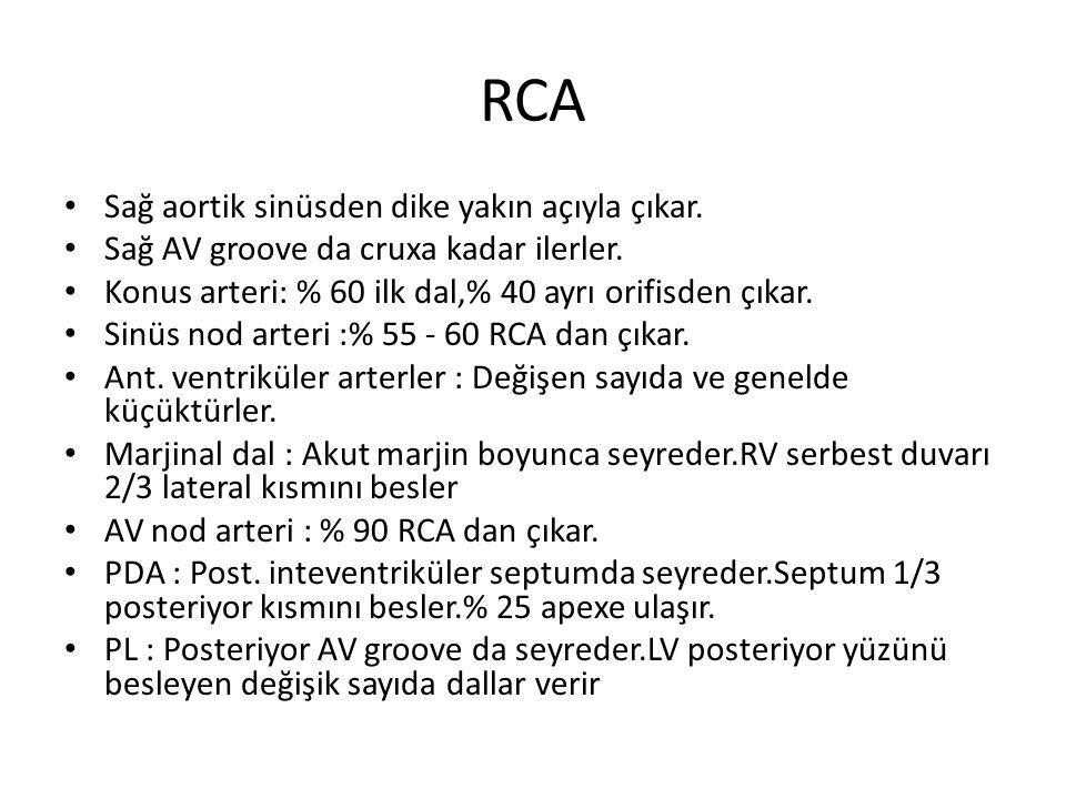 RCA Sağ aortik sinüsden dike yakın açıyla çıkar.