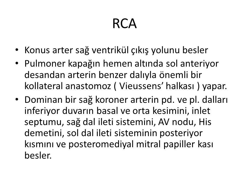 RCA Konus arter sağ ventrikül çıkış yolunu besler