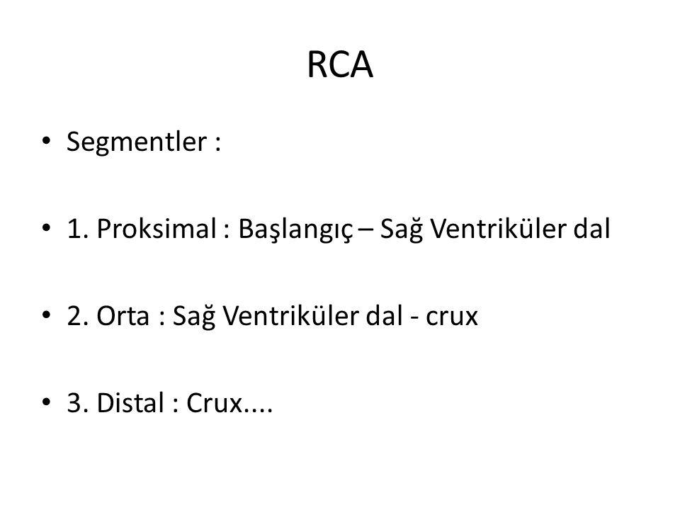 RCA Segmentler : 1. Proksimal : Başlangıç – Sağ Ventriküler dal