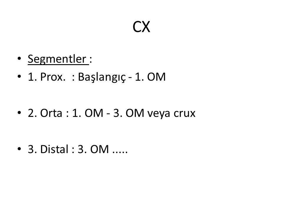 CX Segmentler : 1. Prox. : Başlangıç - 1. OM