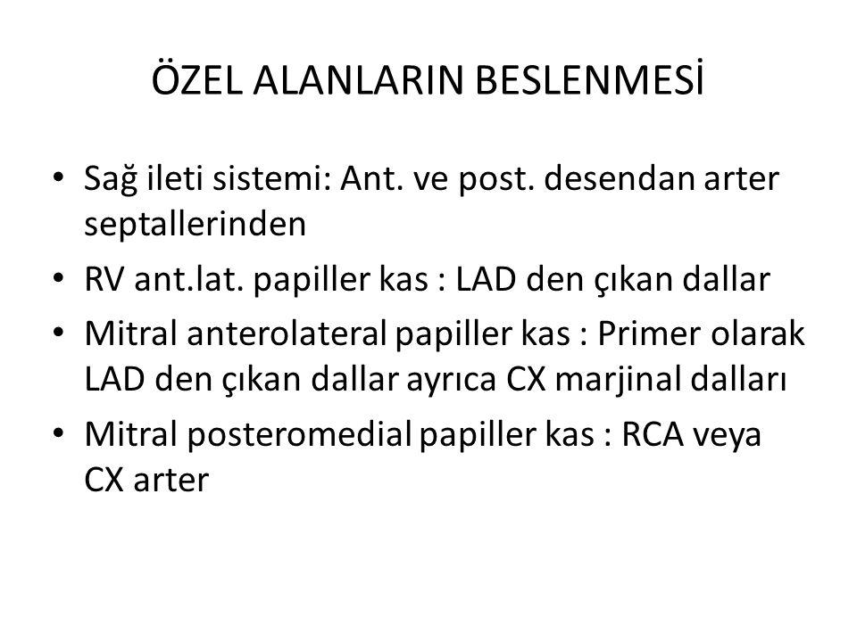 ÖZEL ALANLARIN BESLENMESİ