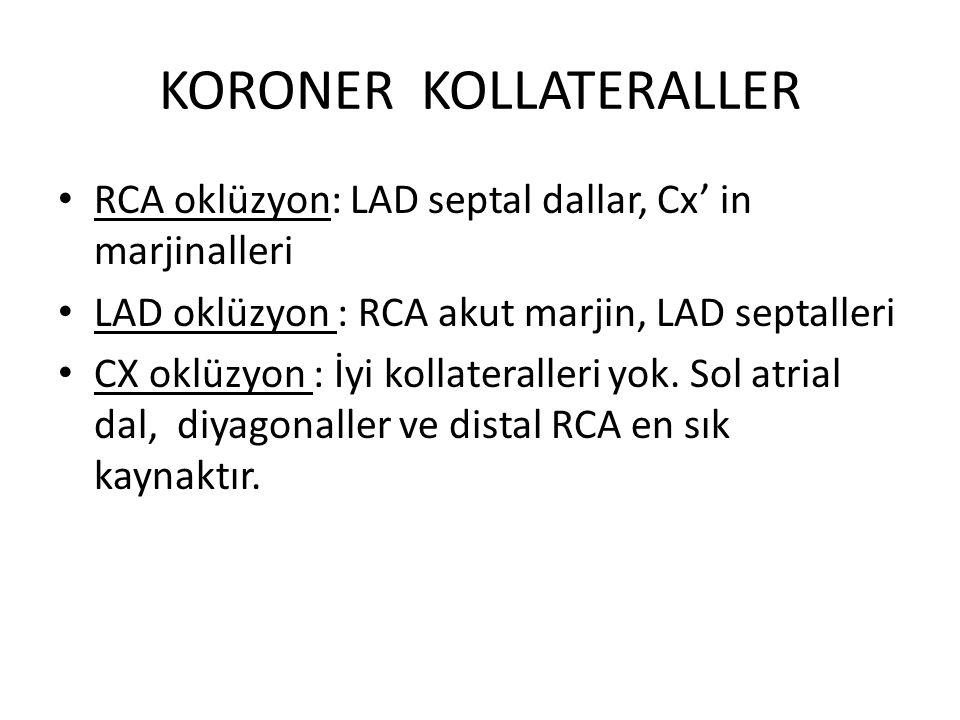 KORONER KOLLATERALLER