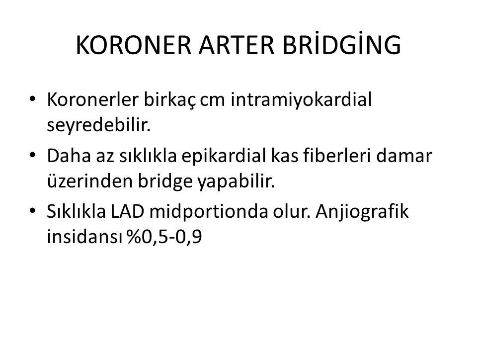 KORONER ARTER BRİDGİNG