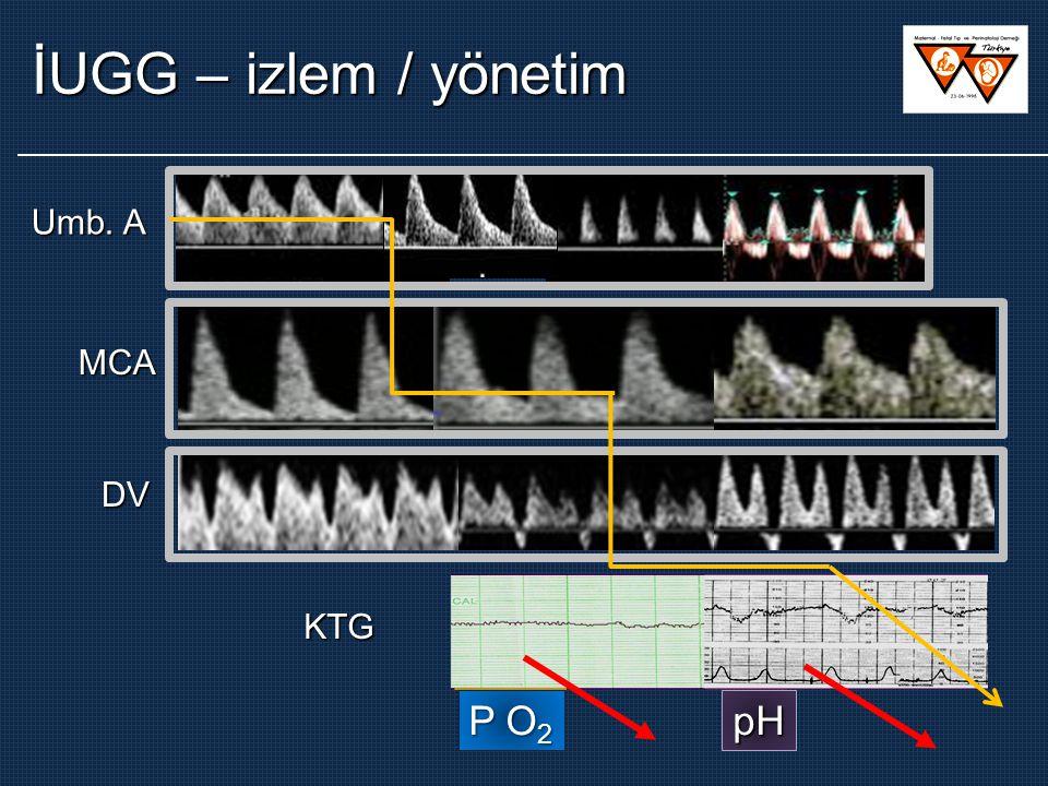 İUGG – izlem / yönetim Umb. A MCA DV KTG P O2 pH