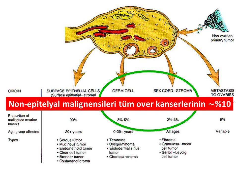 Non-epitelyal malignensileri tüm over kanserlerinin ∼%10