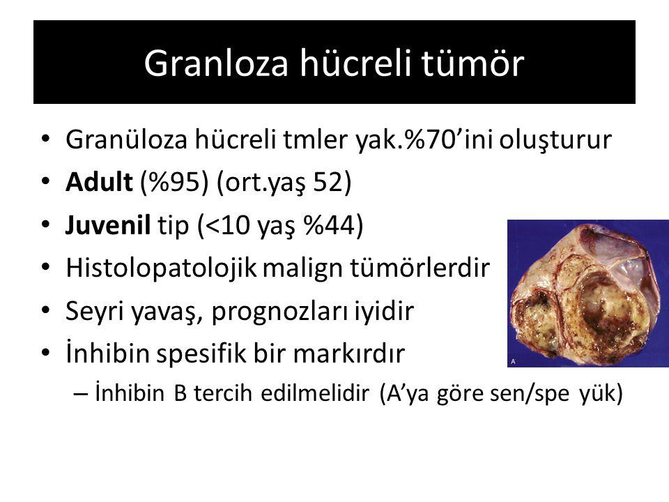 Granloza hücreli tümör