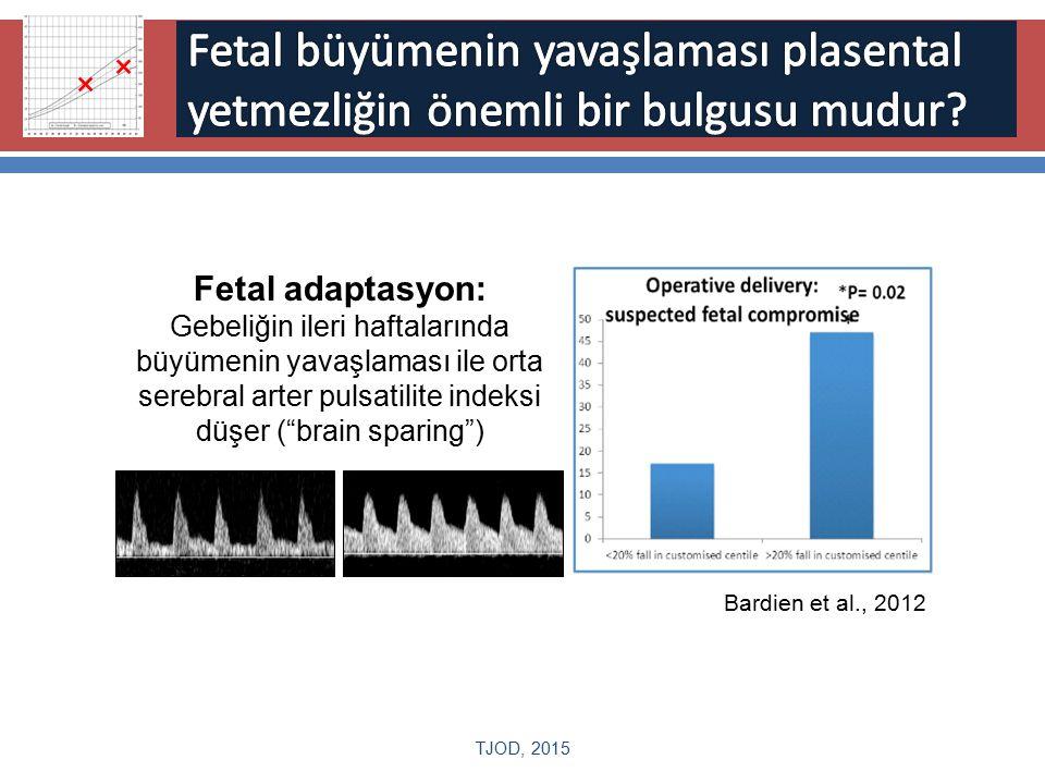 × Fetal büyümenin yavaşlaması plasental yetmezliğin önemli bir bulgusu mudur Fetal adaptasyon: