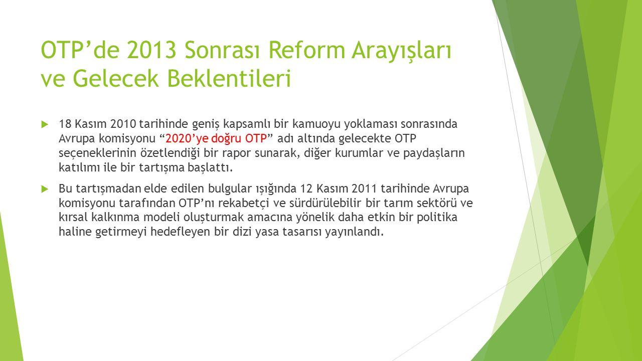 OTP'de 2013 Sonrası Reform Arayışları ve Gelecek Beklentileri