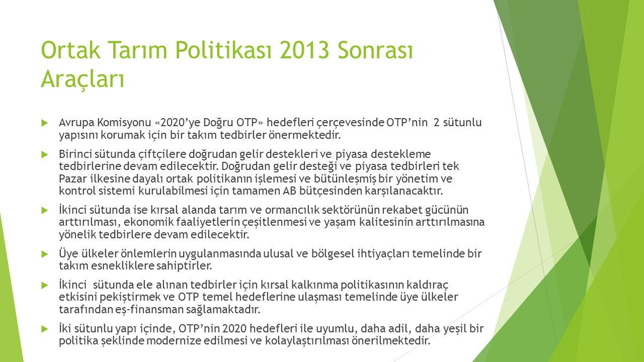 Ortak Tarım Politikası 2013 Sonrası Araçları