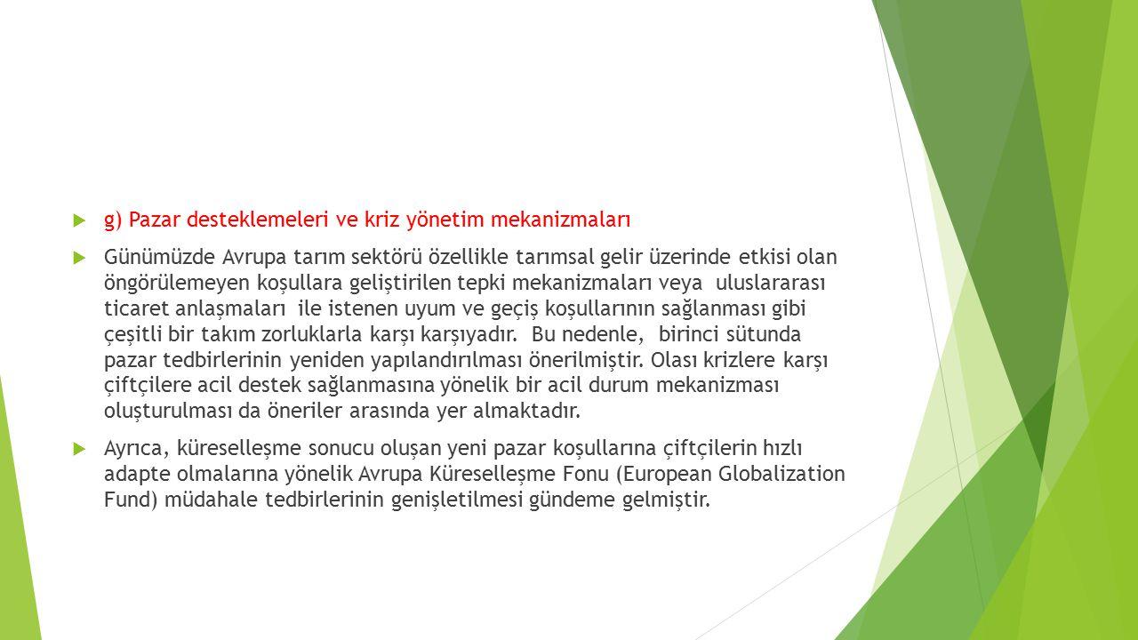 g) Pazar desteklemeleri ve kriz yönetim mekanizmaları