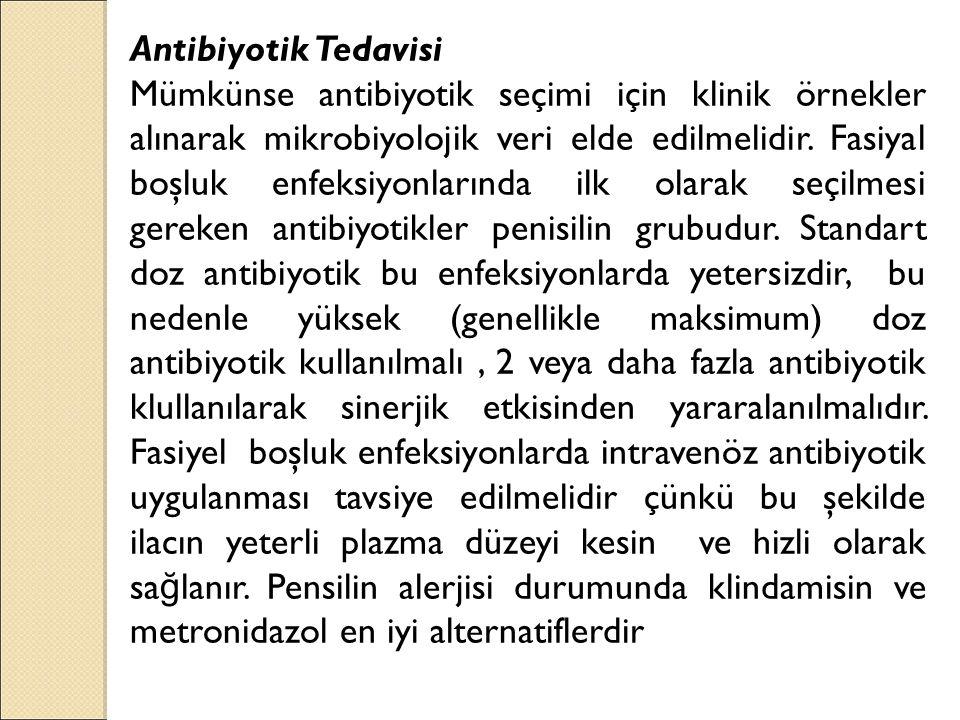 Antibiyotik Tedavisi